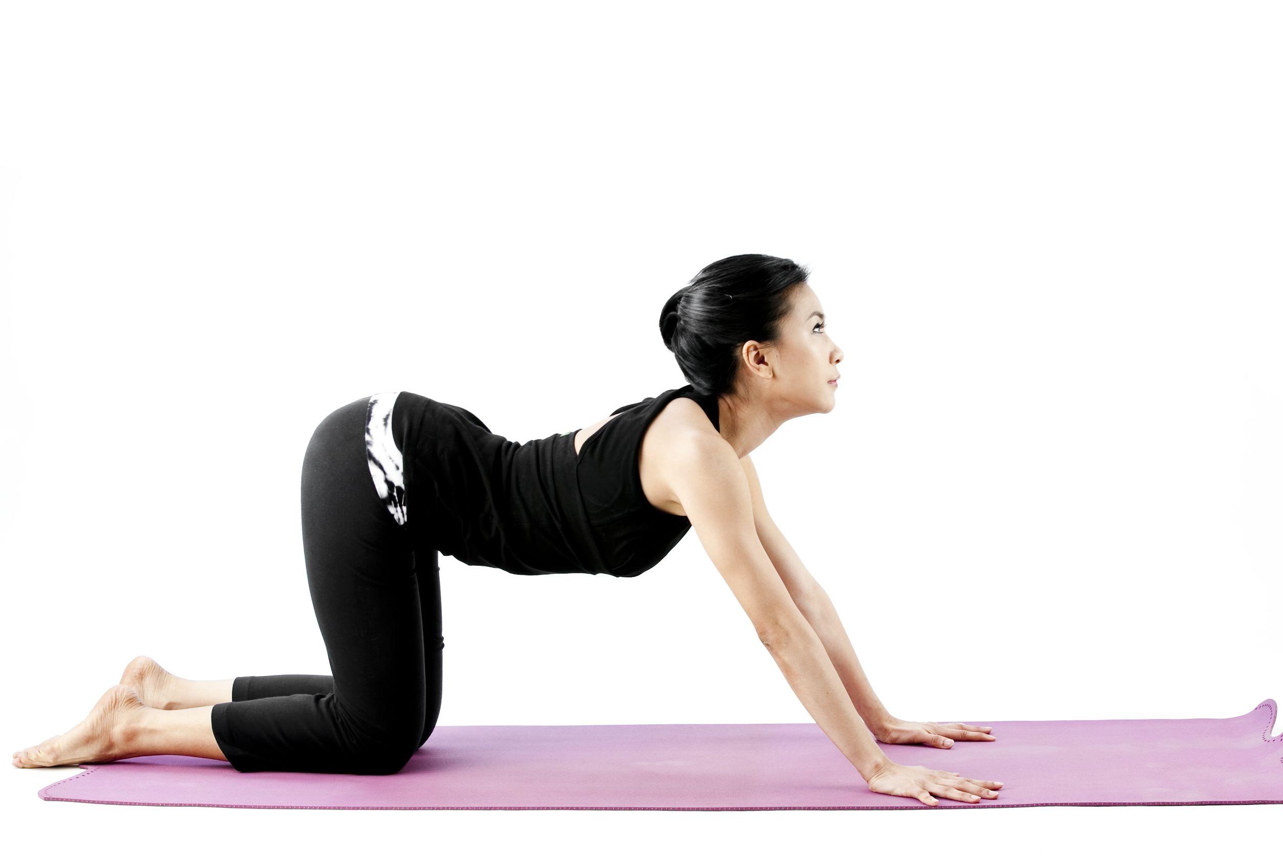 yoga-cat-pose